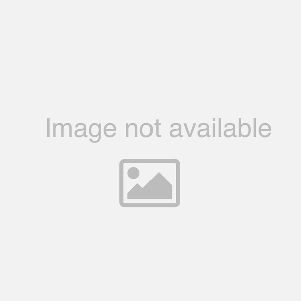Men's Maritz Soft-Shell Curling Jacket
